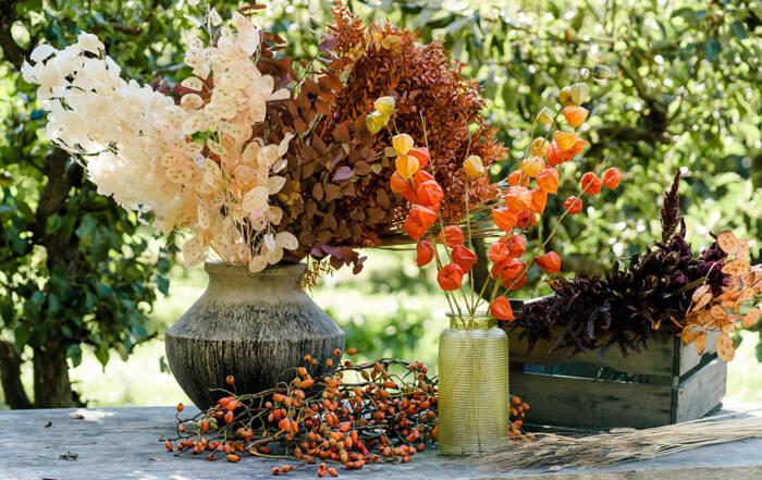 høsttørkede blomster